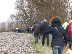 170115-Marche3-Ittenheim-bois