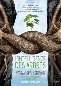 CINE-DEBAT « L'intelligence des arbres » 23 janvier 2018 @ Espace Culturel de Vendenheim | Vendenheim | Grand Est | France