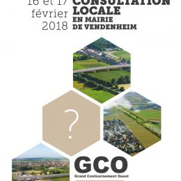 2018-0216-17_consultation-vendenheim