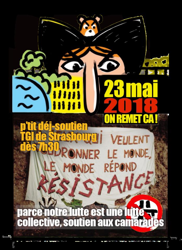 23 mai 2018 : APPEL à soutien devant le tribunal (bis) @ T.G.I. de Strasbourg | Strasbourg | Grand Est | France